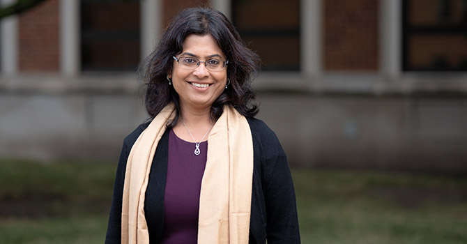 Mousumi Banerjee Recognized with Collegiate Research Professorship