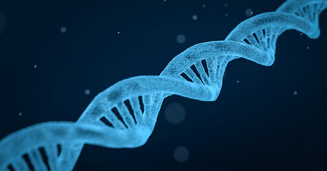 IN THE NEWS: Would a DNA Test Help You Stick to Your Diet?