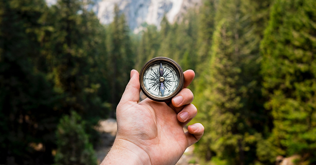 A person holding a compass in the woods.