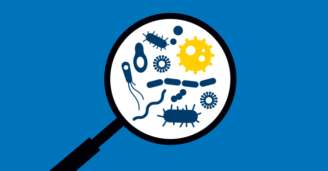 Disease Detectives: How to Track an Epidemic