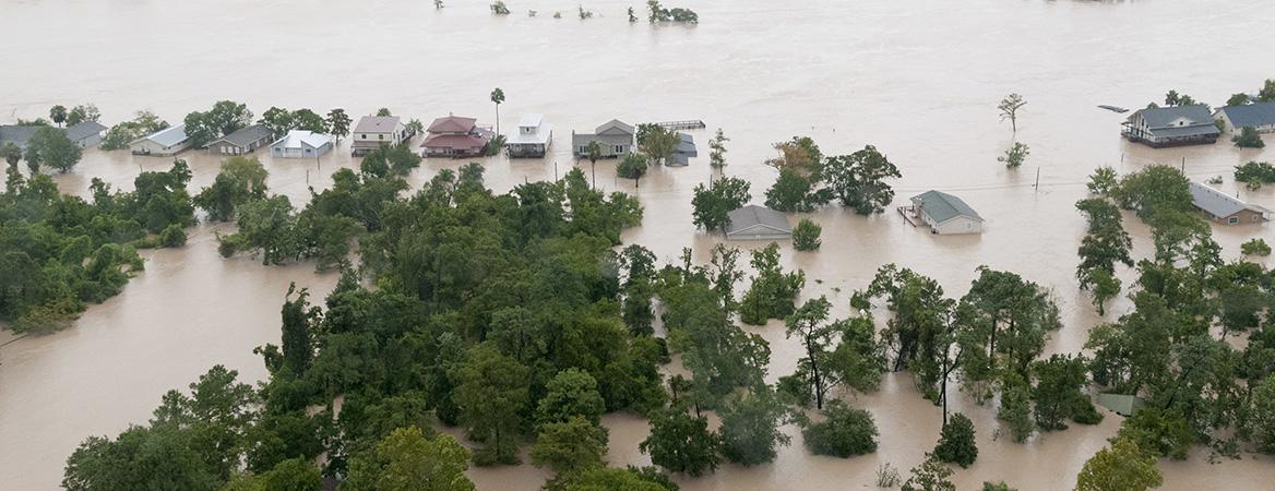 Disease in the Era of Climate Change: Human Disease