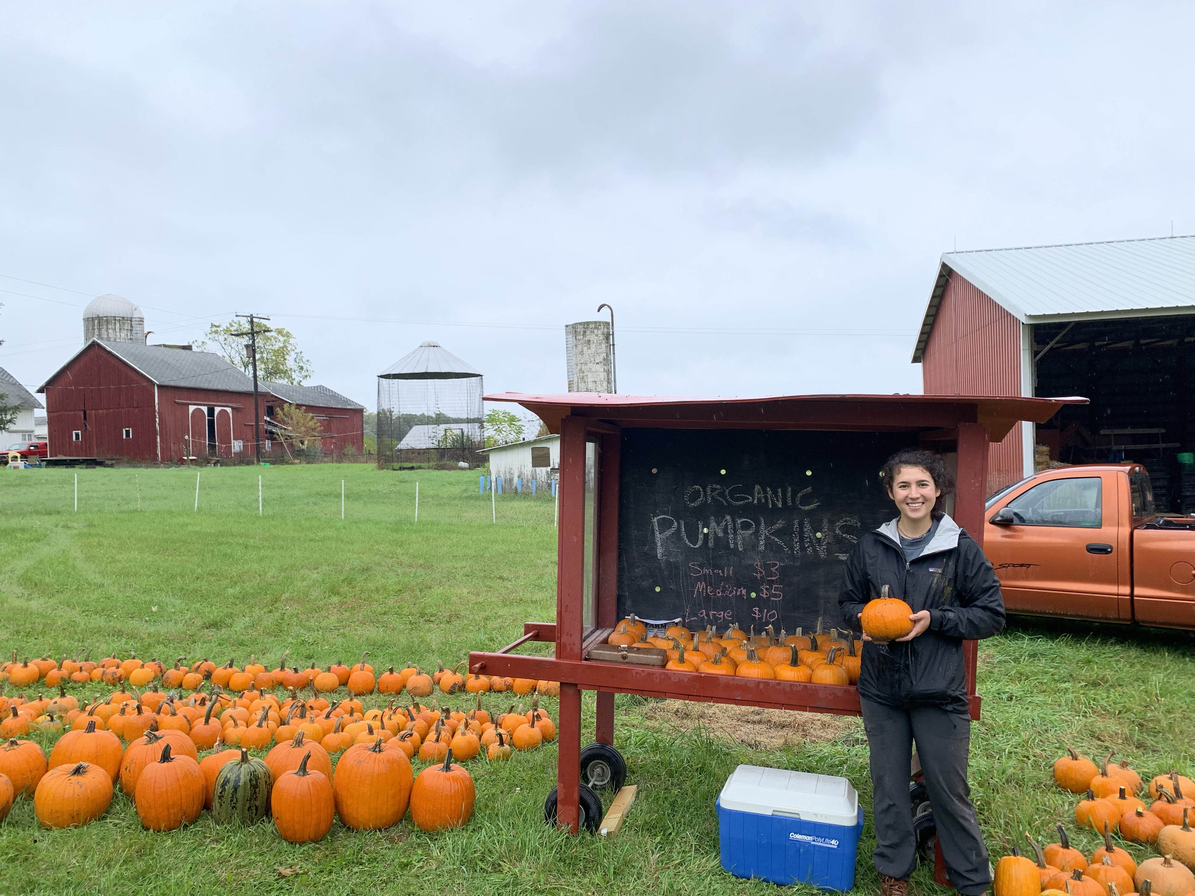 Last summer, Schmitter worked at Brines Farm in Webster Township near Dexter, Michigan. The farm is organically certified and grows food commercially year-round by using hoop houses and other sustainable techniques. Schmitter is pictured here with some of the pumpkin harvest.